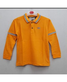 New polo shirt for boys