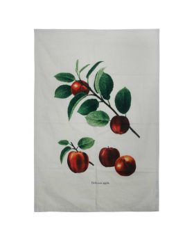 DT-38 1pc Dish towel 1