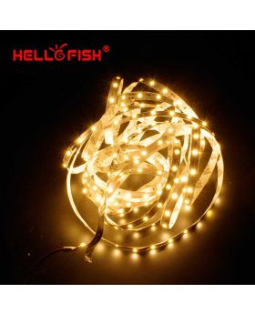 5M 15Feet LED Strip Lighting Kit With 44 Key Remote Controller